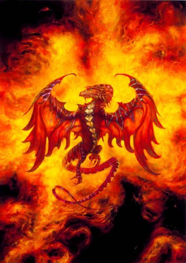 Le dragon de feu - Photo de phenix ...